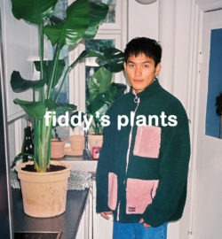 fiddysplants